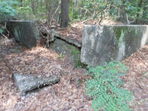 There are foundations from a former Civilian Conservation Corps located on the road to Hinson Lake from East Washington Street. They are in the turn around area on the right.